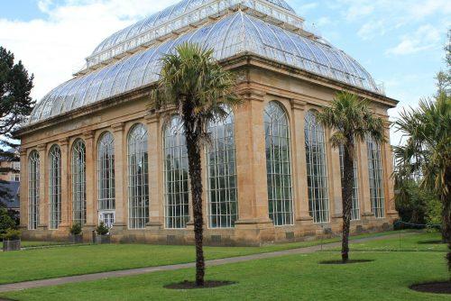 Botanics Edinburgh